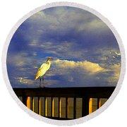 Daytona Beach Rail Bird Sun Glow Pier  Round Beach Towel