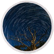 Dead Oak With Star Trails Round Beach Towel
