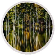Deadwood Round Beach Towel by Mihai Andritoiu
