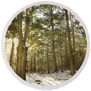 Deep In The Forest Round Beach Towel by Alana Ranney