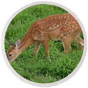 Deer 46 Round Beach Towel
