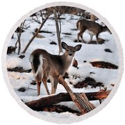 Deer And Snow Round Beach Towel