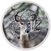 Deer Hunter's View Round Beach Towel