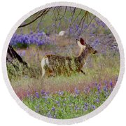Deer In The Meadow Round Beach Towel by Debby Pueschel