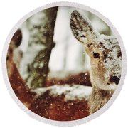 Deer In The Snow Round Beach Towel