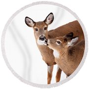 Deer Kisses Round Beach Towel