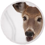 Deer Talk Round Beach Towel