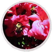 Round Beach Towel featuring the photograph Delving Into Sweetness by Robyn King