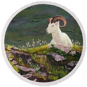 Denali Dall Sheep Round Beach Towel