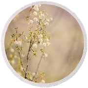 Desert Delicates Round Beach Towel