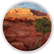 Desert Juniper Round Beach Towel