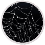 Dew Drops On Web 2 Round Beach Towel