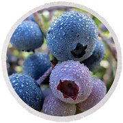 Dewy Blueberries Round Beach Towel by MTBobbins Photography