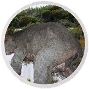 Round Beach Towel featuring the photograph Diprotodon by Miroslava Jurcik