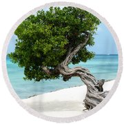 Divi Divi Tree In Aruba Round Beach Towel by DejaVu Designs