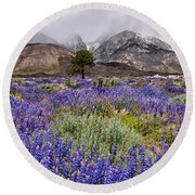 Division Creek Lupine Round Beach Towel