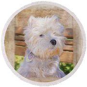 Dog Art - Just One Look Round Beach Towel