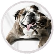 Dog Mastiff Round Beach Towel by Evgeniy Lankin