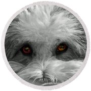 Coton Eyes Round Beach Towel