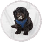 Doggone Good Beach Fun Round Beach Towel