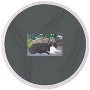 Dogs Daisy And Buttons Round Beach Towel
