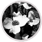 Dogwood 3 Round Beach Towel by Andrea Anderegg