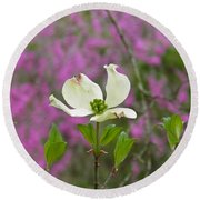 Dogwood Bloom Against A Redbud Round Beach Towel by Nick Kirby