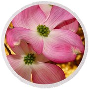Dogwood In Pink Round Beach Towel by Roger Becker