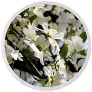 Dogwoods In The Spring Round Beach Towel by Kim Pate
