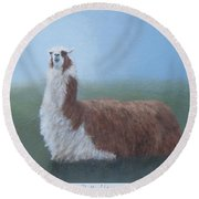 Dolly Llama Round Beach Towel