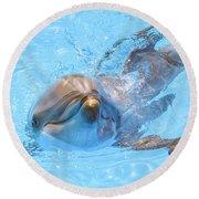 Dolphin Swimming Round Beach Towel