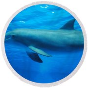 Dolphin Underwater Round Beach Towel by DejaVu Designs