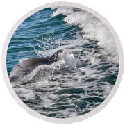 Dolphins Smile Round Beach Towel