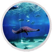 Round Beach Towel featuring the photograph Dont Worry It'll Grow Back by Patricia Griffin Brett