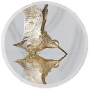 Dowitcher Wing Stretch Round Beach Towel