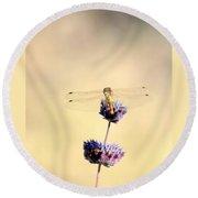 Dragonfly Round Beach Towel by AJ  Schibig