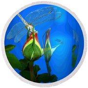 Round Beach Towel featuring the photograph Dragonfly And Bud On Blue by Joyce Dickens