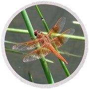 Dragonfly Orange Round Beach Towel
