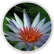 Dragonlily Round Beach Towel by Larry Nieland