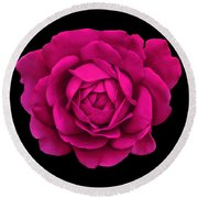 Dramatic Hot Pink Rose Portrait Round Beach Towel