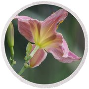 Round Beach Towel featuring the photograph Dreamy Daylily by Patti Deters