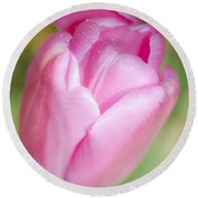 Dreamy Tulip Round Beach Towel by Dee Cresswell