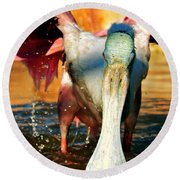 Round Beach Towel featuring the photograph Drenched by Faith Williams