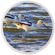 Round Beach Towel featuring the photograph Dribbling Contest by Gary Holmes
