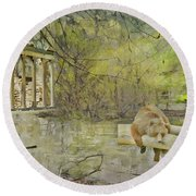 Round Beach Towel featuring the photograph Drifter by Liane Wright