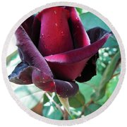 Round Beach Towel featuring the photograph Droplets On The Petals by Vesna Martinjak