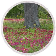Round Beach Towel featuring the photograph Drummonds Phlox And Crown Tickweed Central Texas by Dave Welling