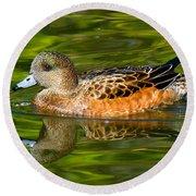 Young Female Mallard Duck Round Beach Towel