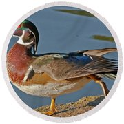 Round Beach Towel featuring the photograph Duck Yoga by Kate Brown