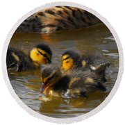 Duckling Splash Round Beach Towel